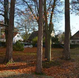 Traumhaftes Grundstück mit altem Baumbestand und mit Süd-Ost Ausrichtung, unweit Groß Glienicker See