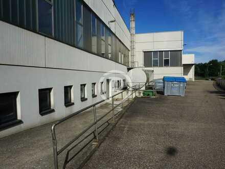 Halle mit ca. 7,60 m Deckenhöhe und weitere kleinteilige Lagerflächen