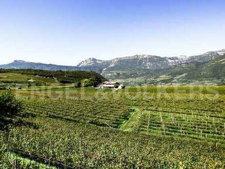 Exklusiver Bauernhof mit Weingut