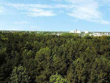 Unbebautes Grundstück/Waldfläche