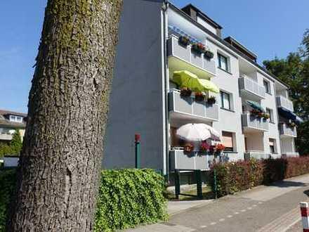 1- Raum Apartment mit Balkon, EBK, Stellpl. sowie Gartenmitbenutzung