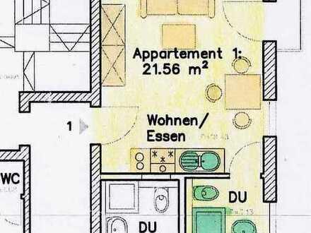 1-Zi.-Appartement in Horb-Zentrum