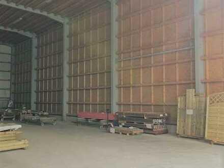 Produktions- und Lagerhalle (3) neben Traditionsbetrieb Ammann Gensingen