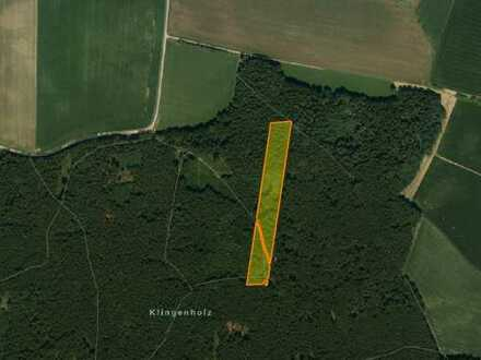 Waldfläche bei Hilgertshausen Nähe Gerolsbach und Jetzendorf zu verkaufen!
