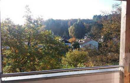 Ruhige Wohnung mit Blick in Oberwiesen