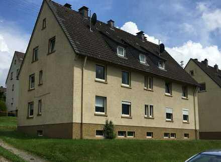 Liesewald: modernisierte Wohnung für max. 2 Personen im DG