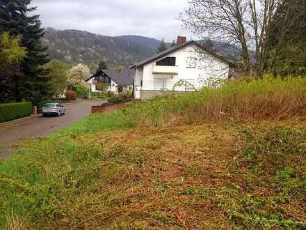 Kleine Provision! Großes Baugrundstück zu verkaufen in Annweiler am Trifels!