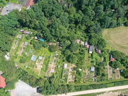 HERBST-AUKTION 2021: Grundstück mit Kleingartenanlage - verpachtet