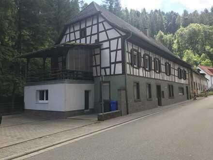 Erstbezug nach Sanierung: ansprechende 2-Zimmer-Wohnung in Elmstein