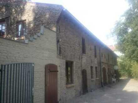 Wohnung im Grünen mit sonniger Terrasse