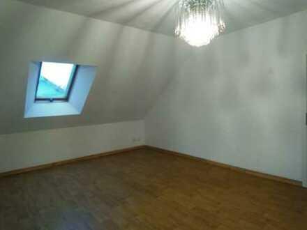 Vollständig renovierte 2-Zimmer-Wohnung mit Balkon in Waghäusel