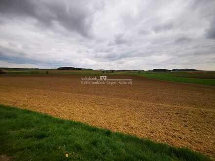 Ausgleichsfläche oder Kapitalanlage? 3 landwirtschaftliche Flächen nähe Kösching zu ewerben!