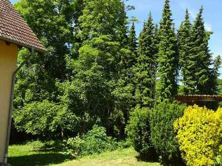 Familientraum !! - - Bald frei - - Eigenes Haus mit Garten und viel Platz in Schweppenhausen