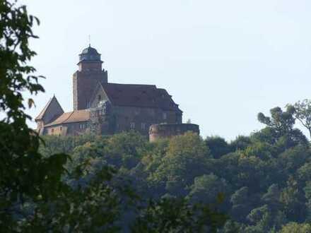 Odenwaldkreis - Schönes, grosszügiges Baugrundstück in Breuberg/Rai-Breitenbach