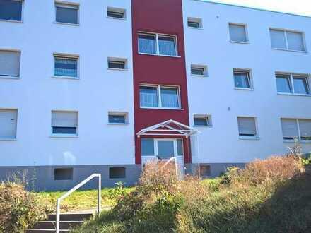 Exklusive, vollständig renovierte 1-Zimmer-EG-Wohnung mit EBK in Ispringen