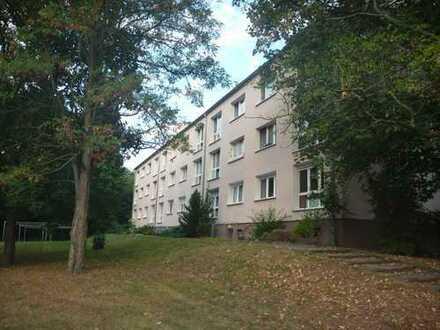 Paretz - Helle und schöne 1-Raum Wohnung