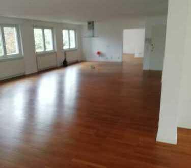 Geräumige 3-Zimmer-Loft-Wohnung mit gehobener Innenausstattung zur Miete in Heidelberg