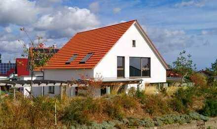 Aussichtslage im Rebenmeer der Pfalz!