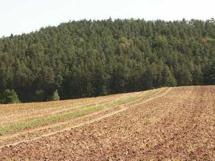 Nutzwald mit über 70 Jahre alten Baumbestand 9450 m² Obernzenn OT Wimmelbach