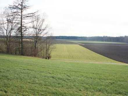 Grünland-Areal als ökologische Ausgleichsfläche oder Freizeitgrundstück in Purfing