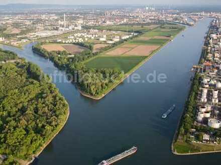 !!! Traitteur Immobilien- 2.500m² Freifläche am Industriehafen in Mannheim-!!!