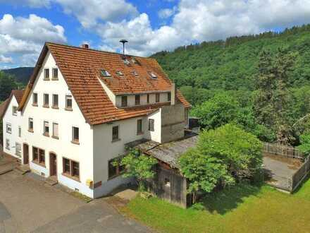 Stark sanierungsbedürftg / Teilabriss - sehr großes Mehrfamilienhaus auf circa 2.800 m² Grundstück