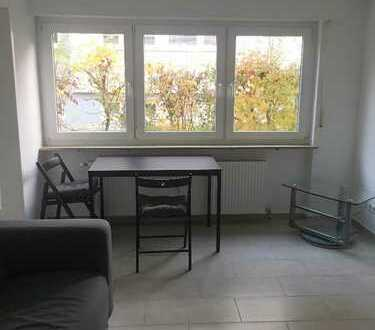 vollständig renovierte und möblierte 1-Zimmer-Wohnung in Freiberg am Neckar