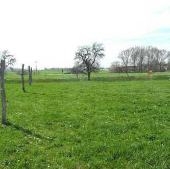 Grundstück auf dem Land in Langenbernsdorf / Trünzig zu verkaufen !