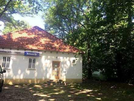 Vollvermietet - Büro/Praxen in Coswiger OT