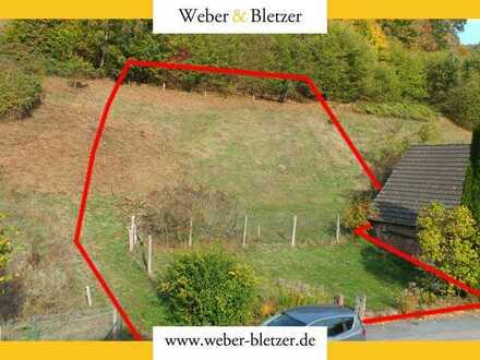 Wohnen im idyllischen Odenwald - sonniges Baugrundstück