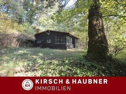 RARITÄT und Natur pur!  Jagdhaus & Scheune & 12.455 m² Grund, Berching - Pollanten