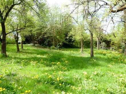 Grundstück am Ortsrand von Haslach