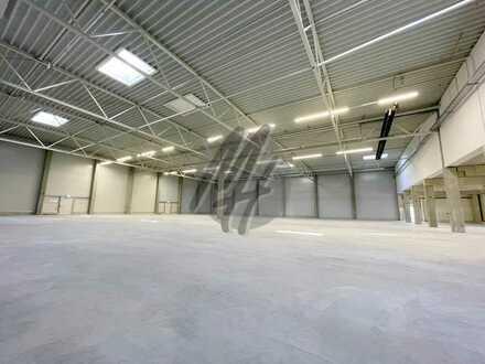 TOP-AUSSTATTUNG ✓ RAMPE + EBEN ✓ Lager (900 m²), Service (300 m²) & Büro (300 m²) zu vermieten