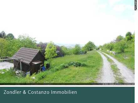 * ROTENBERG: Schönes Gartengrundstück * ca. 399 qm * Holz-Gartenhaus * Wasseranschluss *