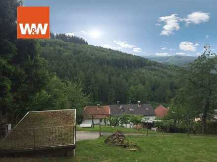 1019m² Hanggrundstück in Rothenberg /Kortelshütte!