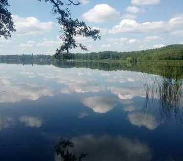 *Grundstück zwischen Wald und See*