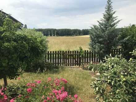 Großzüzige Gartenwohnung mit Blick auf den Deich und alleiniger Gartennutzung!