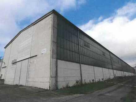 Gewerbefläche mit Produktions- und Lagerhallen Vermietung/ Verkauf