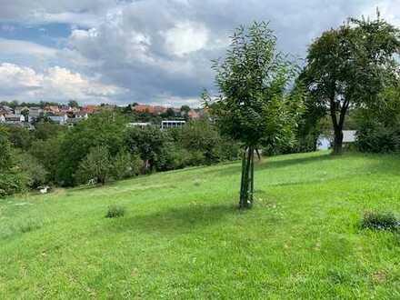 Kleine Projektentwicklung in Waibstadt/Daisbach in bester Lage!