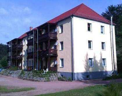3-Raum Wohnung mit Balkon im 2. OG in ländlicher Gegend zu vermieten!