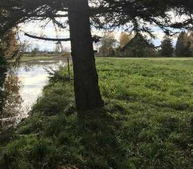Alte Mühle plus 11 ha Fläche, Wasserrecht und Fischwasser