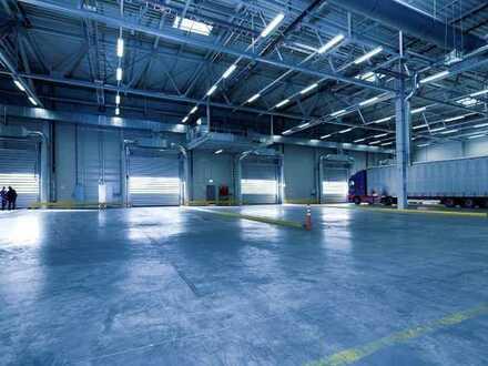 """""""BAUMÜLLER & CO."""" - ca. 40.000 m² hochwertige Hallenfläche in TOP LAGE"""