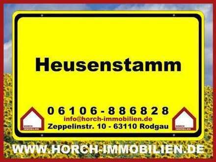 (((HOCH OBEN))) 2,5-Zimmer-Whg., Heusenstamm