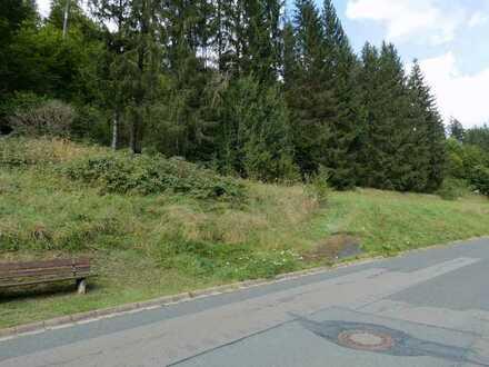 Baugrundstück in Dürrenwaiderhammer