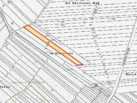 Ackerland Zwischen Sindlingen und Hattersheim