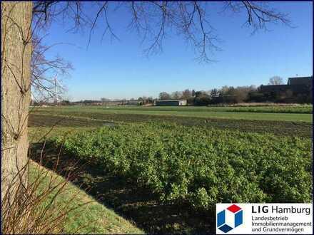 Großzügige Grünfläche in Ackerlage