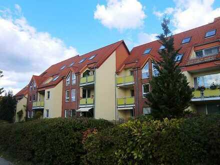 3-Zimmer-EG-Wohnung mit Terrasse, gr. Keller und Stellplatz