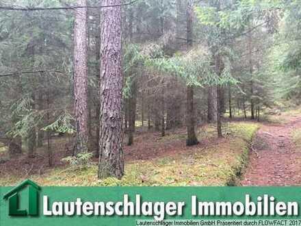 Kompaktes Waldgrundstück bei Hennenberg