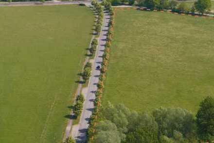 3,8 ha großes Grundstück unmittelbar am Eingang zum Temnitzpark