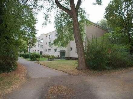 Helle, frisch renovierte 2 1/2 Zimmerwohnung, Küche, Diele, Bad,Balkon in Duisburg